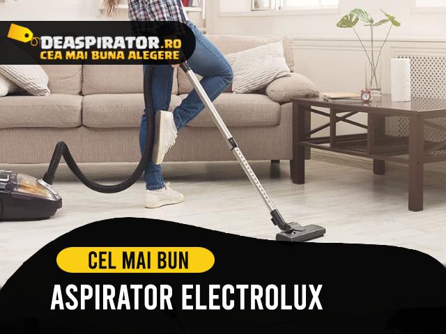 aspirator electrolux
