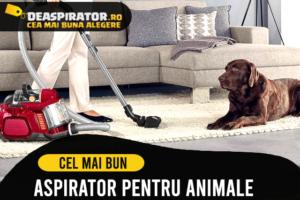 Cel mai bun Aspirator pentru par de animale