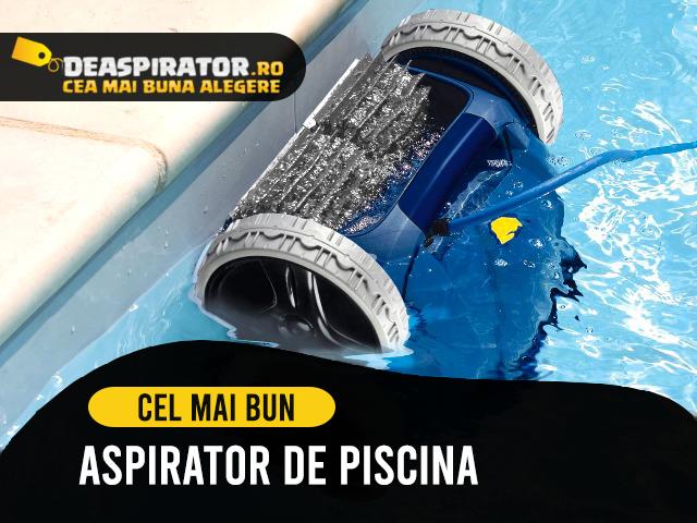 aspirator piscina